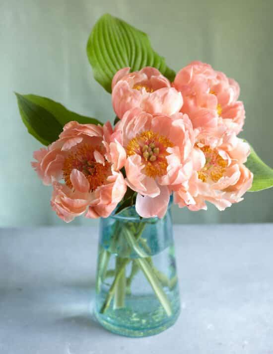 Floral Presence